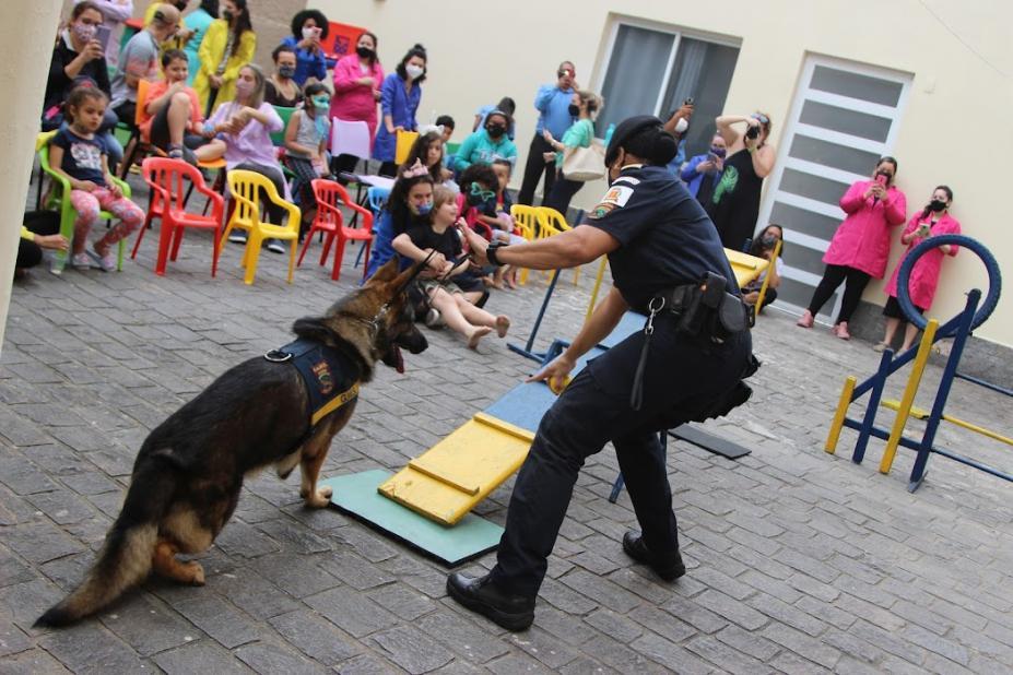 Canil da Guarda Municipal de Santos faz apresentação para autistas — Canal Autismo / Revista Autismo
